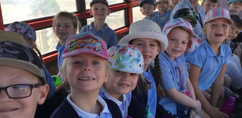 Y1 The Infant Trip to Farmer Ted's – 27th June 2018