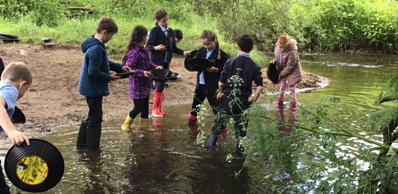 Year 4's trip to Cuerden Valley – 20th June 2019
