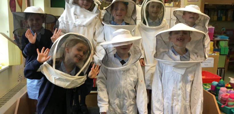 Bees in Year 1 – 8th May 2019