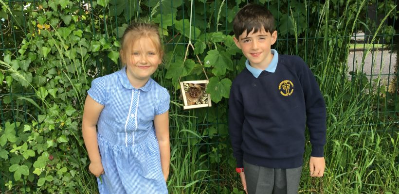 Year 1 find places to put their Mini Beast Houses – 7th June 2021